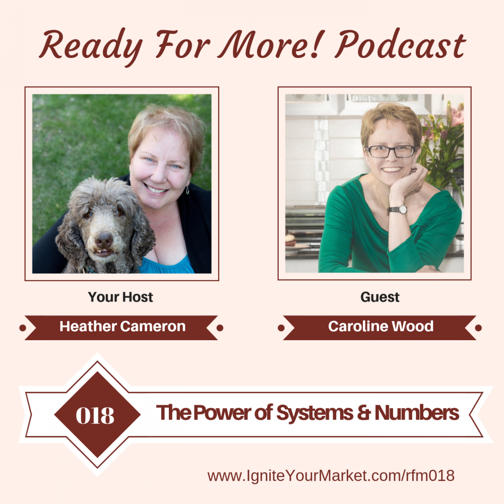The Power of Systems and Numbers – RFM018